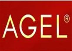 天使丽人(AGEL)