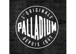 帕拉丁(palladium)