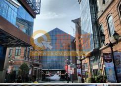 中央文化区--汉街南路