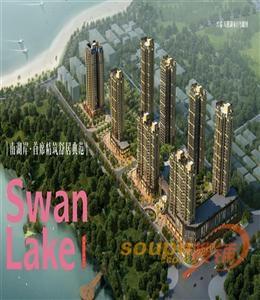 兴瑞·天鹅湖