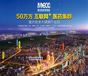 重庆·医药电商城