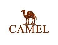 美国骆驼(camel)